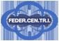Federazione Nazionale Centri di Traduzione e Interpretariato